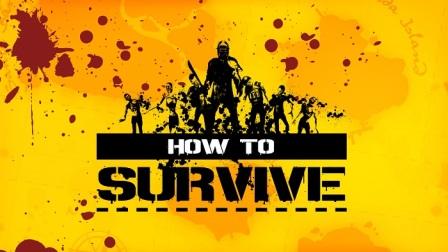 Изображение к русификатору How to Survive