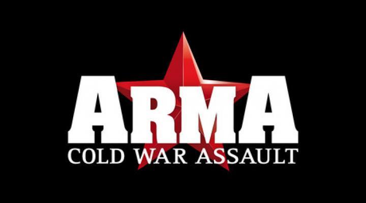 Изображение к русификатору ARMA: Cold War Assault (текст)